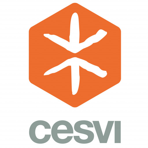 logo_cesvi_5000x5000.jpg